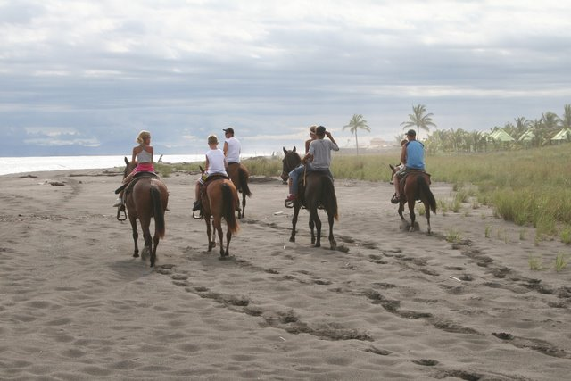 Horseback Riding on the Beaches of Panama